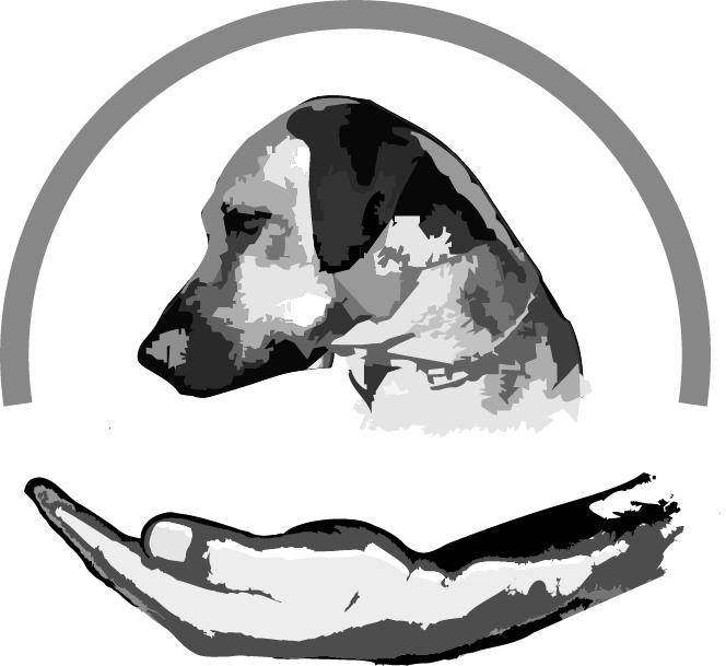 Logo von Wissen - Hund.