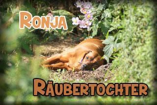 Logo_Ronja_320x140 Kopie