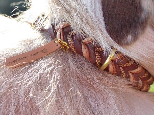 Halsbandshop
